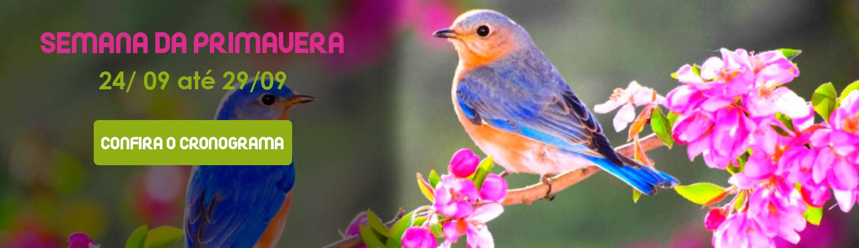 primavera-banner